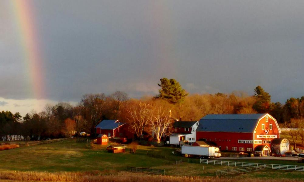 Rainbow-Smiling-Hill-Farm